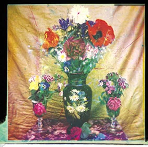 1869_Duco-du-Hauron_flowers_colour_c