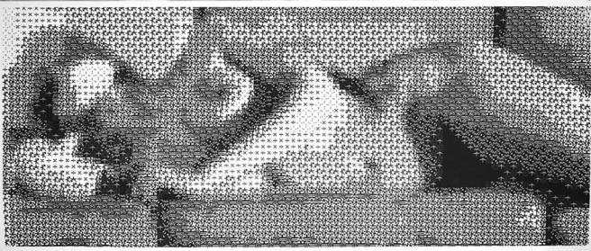 1968_Knowlton_Nude_micro-petterns_c